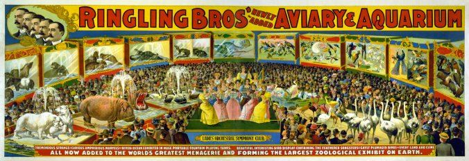 Colourful advertisement for the Ringling Bros' Aviary and Aquarium, 1888 (image from Wikimedia Commons)