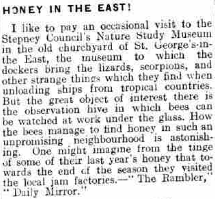 From the Portsmouth Evening News, 8th July 1927, Image © Johnston Press plc. Image created courtesy of THE BRITISH LIBRARY BOARD