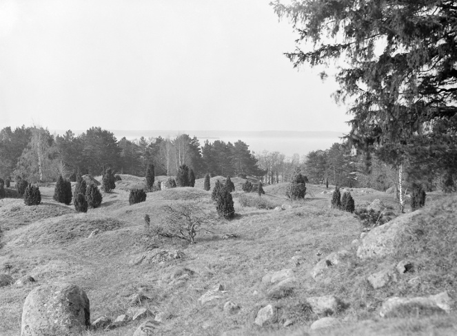 Viking age grave field in Uppland, Sweden (image from Wikimedia Commons)