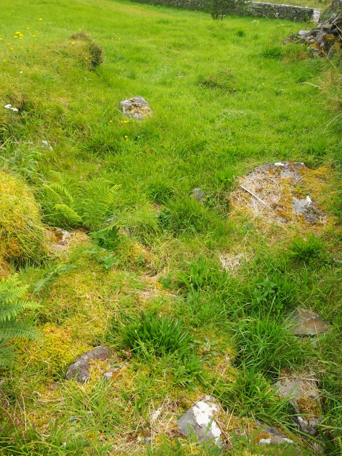 Grave markers obscured by the grass