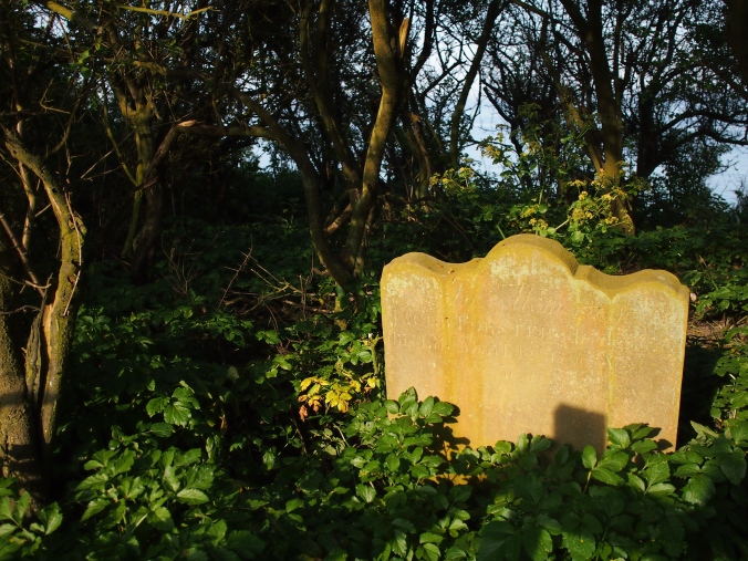 The 'last grave' of old Dunwich